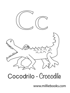 C is for crocodile C de cocodrilo-03